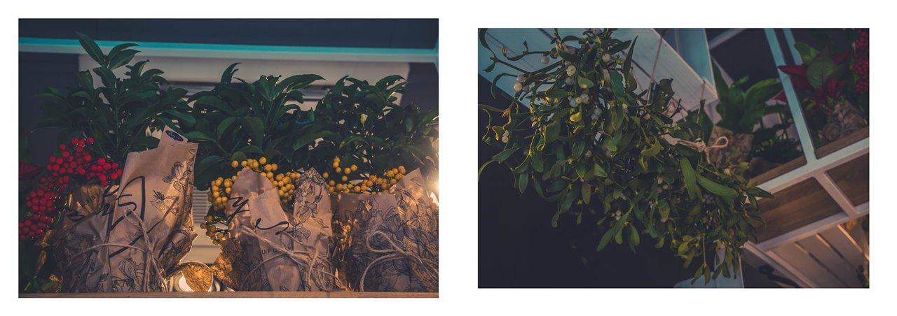 16A badylarz kwiaty cięte w euforii najpiękniejsze kwiaty najlepsza kwiaciarnia w łodzi co kupić w łodzi manufaktura gdzie iść w łodzi co robić w łodzi zdjęcia blog łódzki blogerzy święta