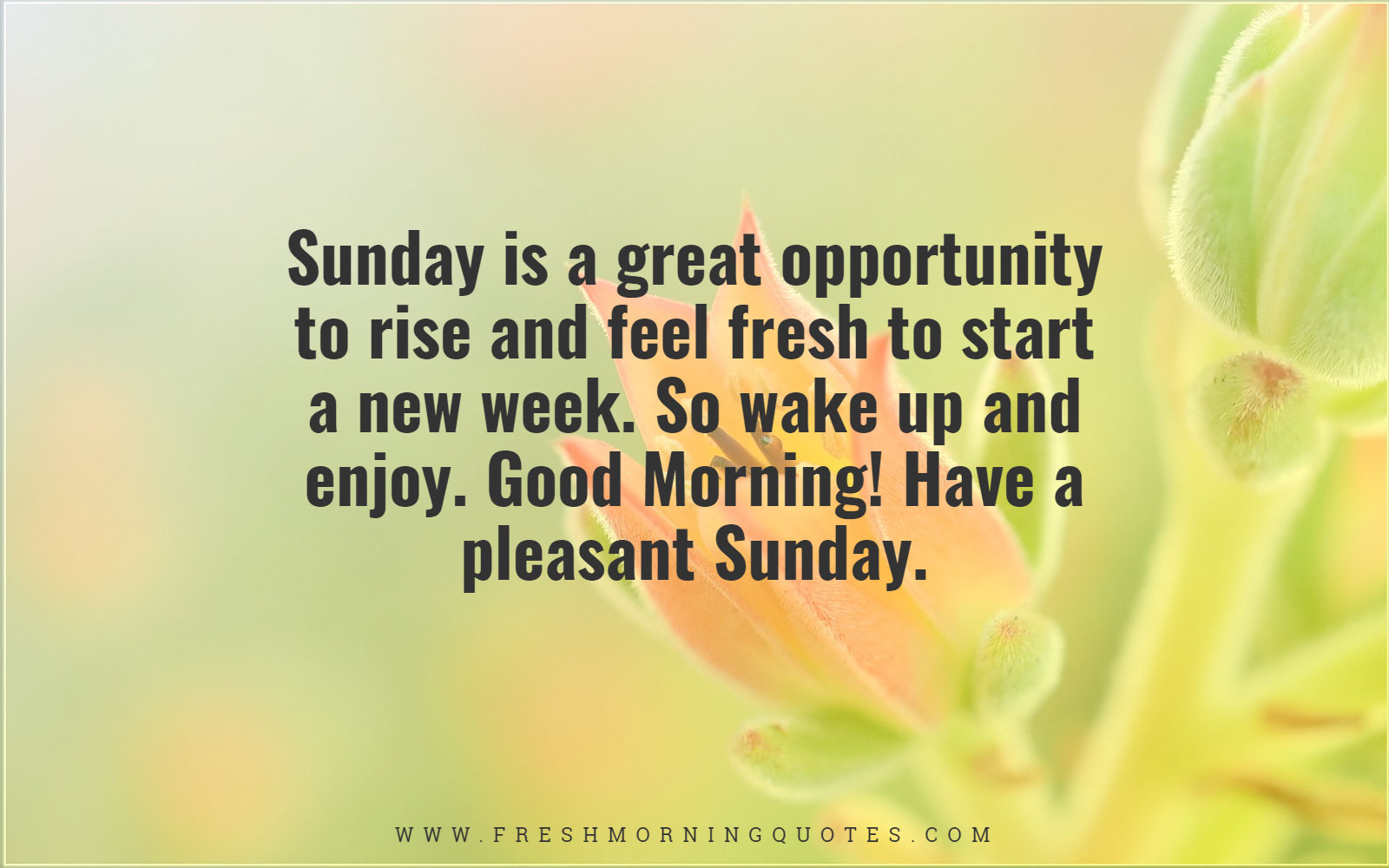 Sunday is a great opportunity to rise and feel fresh