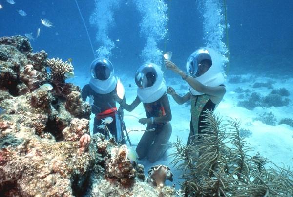 Thám hiểm đáy biển tại đảo Coral Island