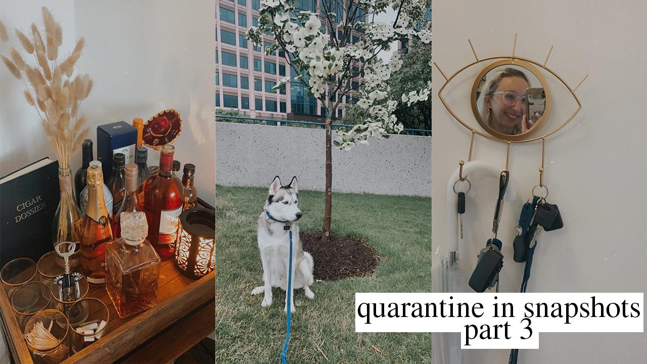 My Quarantine In Snapshots Part Three