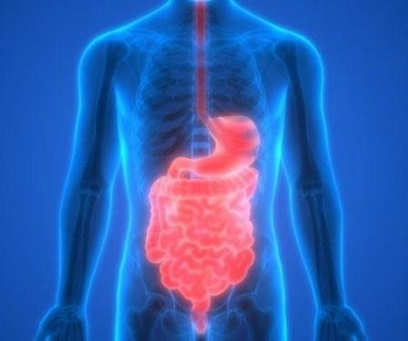 Macam-Macam Gangguan Pencernaan dan Pecegahannya Secara Umum