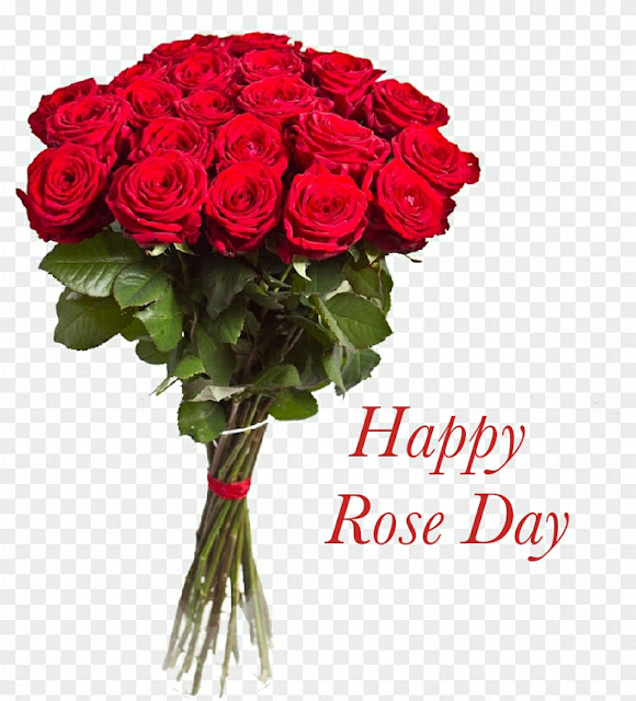Happy-Rose-day-images-and-quotes-jpeg