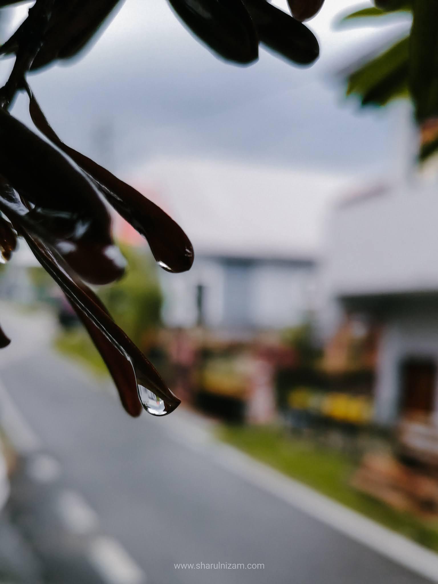Hujan Selepas Panas