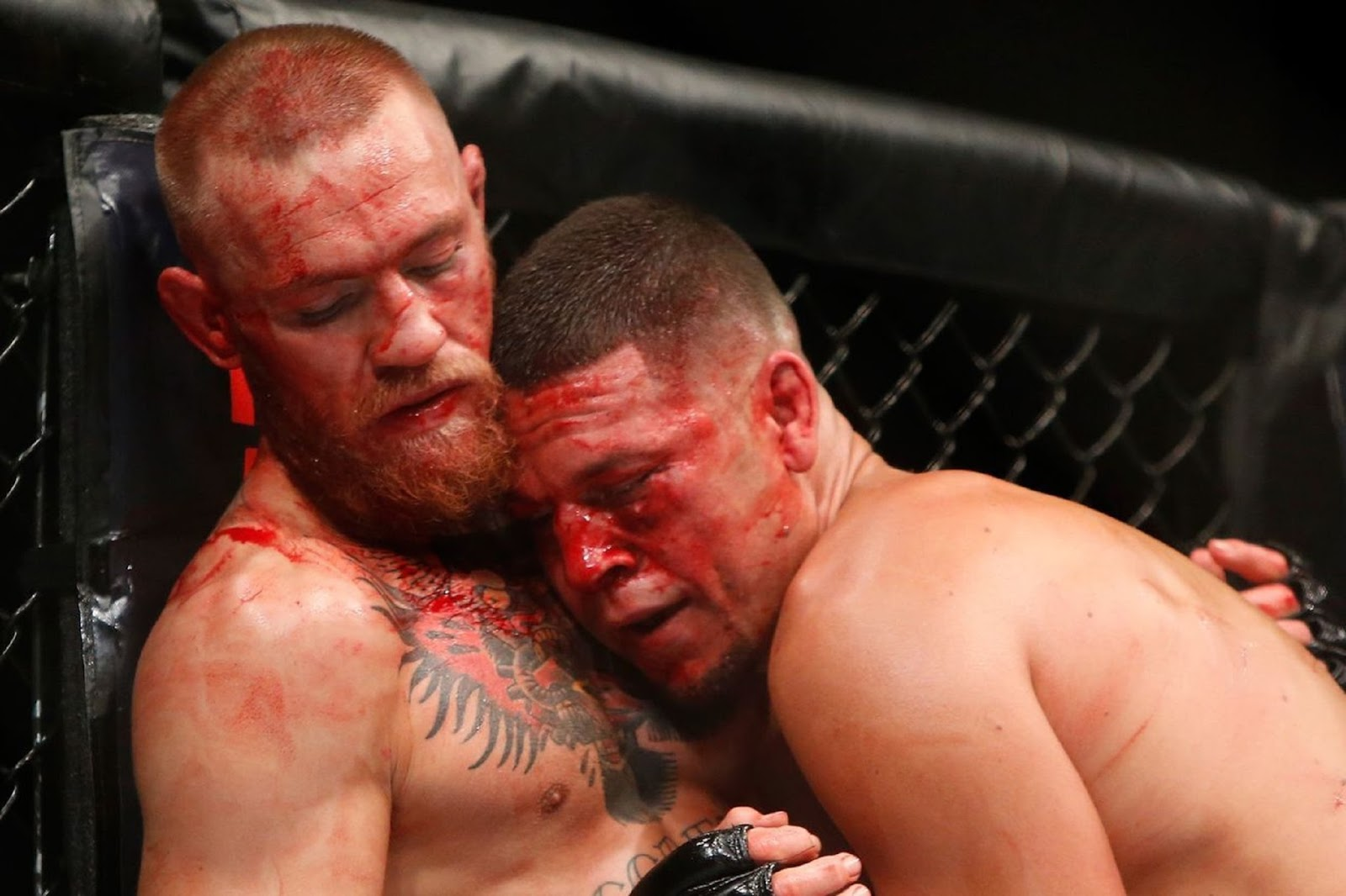 CONOR MCGREGOR VS. NATE DIAZ 3