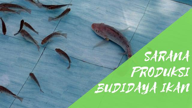Sarana Produksi Dalam Budidaya Ikan