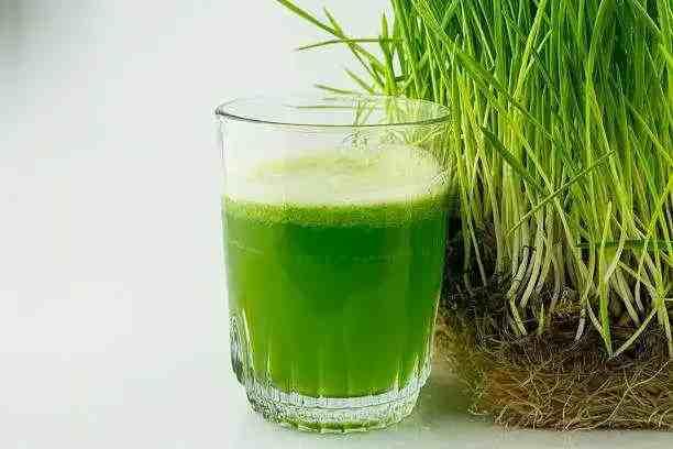 गेंहू के जवारे के 5 फायदे - wheat grass benefits in hindi