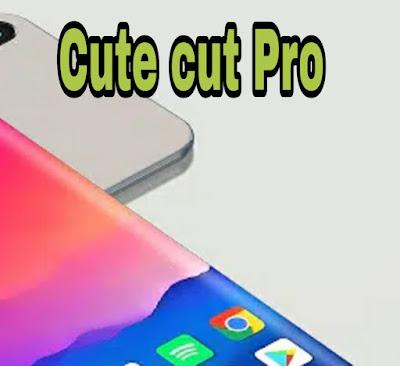 Télécharger le programme piraté Cute Cut Pro pour la dernière version d'Android 2020