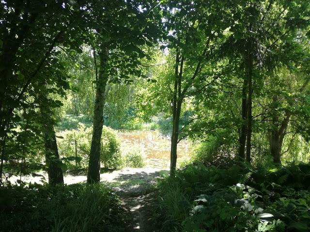 ogród z wielkim stawem