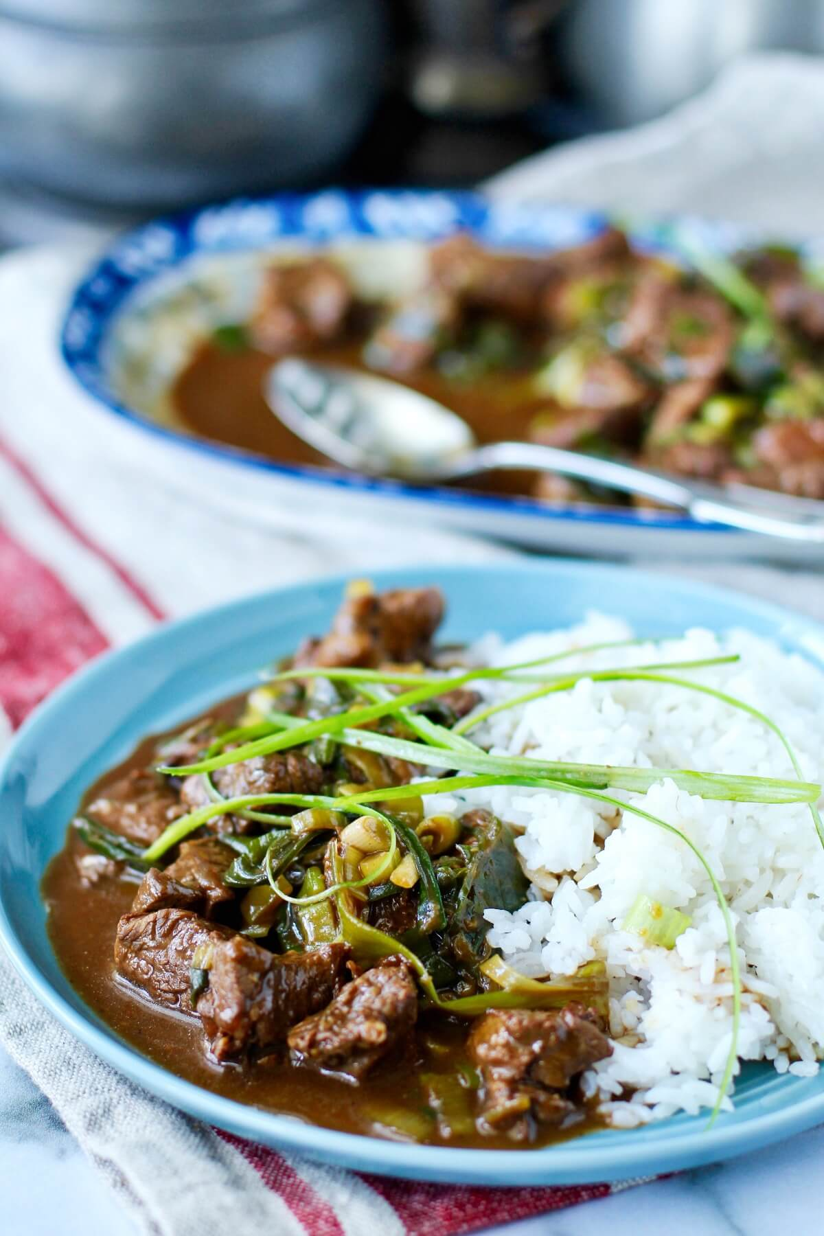 Mongolian lamb with scallions