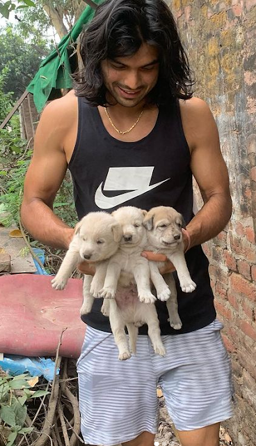 Neeraj Chopra age, height, javelin throw, related and associated to which sport, best throw, Weight, Net Worth, Wife, Wiki, Family, Bio
