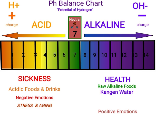 Enagic Kangen Water - Ionized And Miracle Water