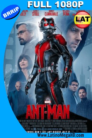 Ant-Man: El Hombre Hormiga (2015) Latino Full HD 1080P ()