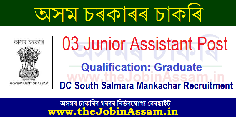 DC South Salmara Mankachar Recruitment