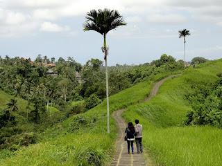Tempat Wisata Ubud Dan Kintamani