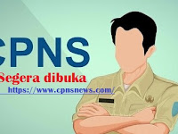Sscasn.bkn.go.id Web Pengumuman CPNS 2019, Simak 5 Poin Penting Berikut