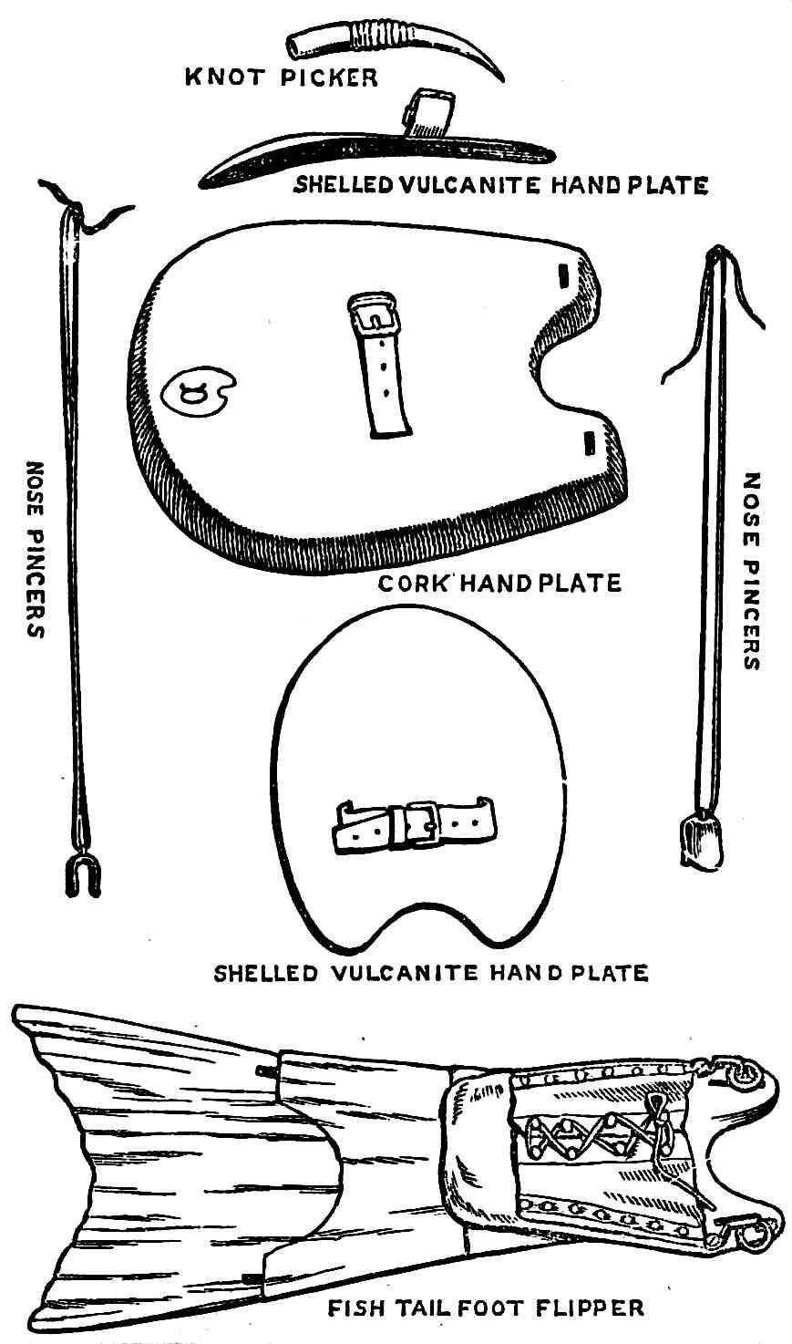 1877 aquatic swimming gear illustration
