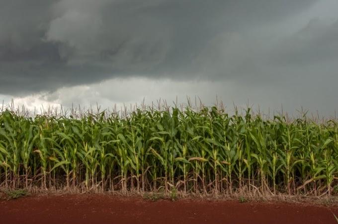 RS pode ter chuva significativa nos próximos sete dias