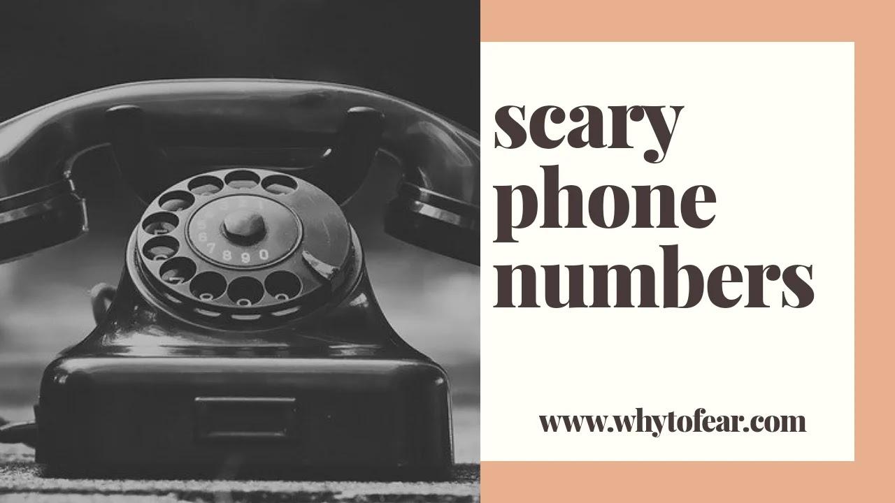 cursed phone numbers