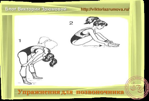 Упражнения на развитие гибкости позвоночника