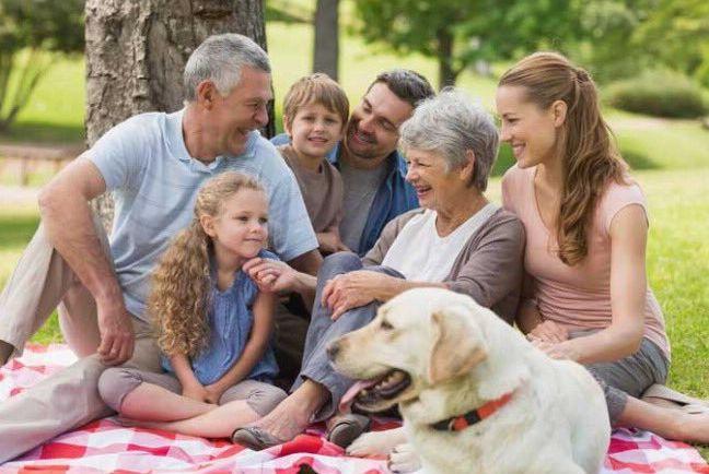 Festa dei Nonni: per nonni e bambini gli amici a quattro zampe fanno bene alla famiglia