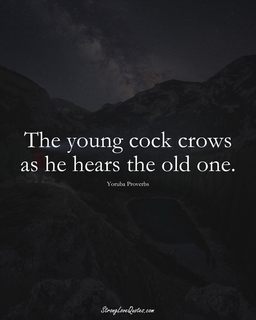 The young cock crows as he hears the old one. (Yoruba Sayings);  #aVarietyofCulturesSayings