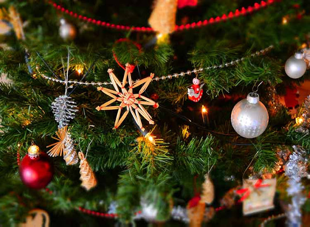Plan your Christmas Tree Shine the Most During Christmas This Year | Christmas | Xmas  | Merry Christmas | How Webs | United States | USA