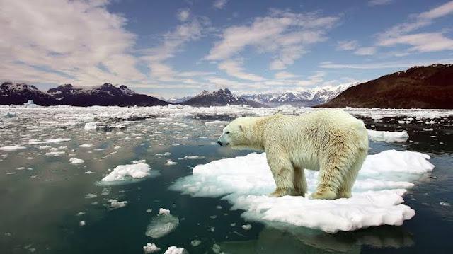 Küresel ısınma nedir 2019