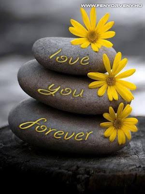 Minden ember érzelmi szükséglete, hogy szeressen