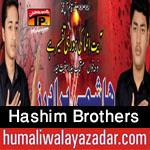 http://www.humaliwalayazadar.com/2015/11/hashim-brothers-nohay-2016.html