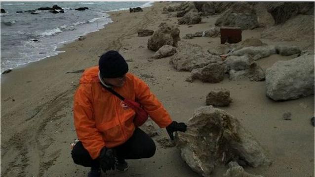 Θεσσαλονίκη: Απολίθωμα τιτανοχελώνας σε παραλία του Δήμου Θερμαϊκού
