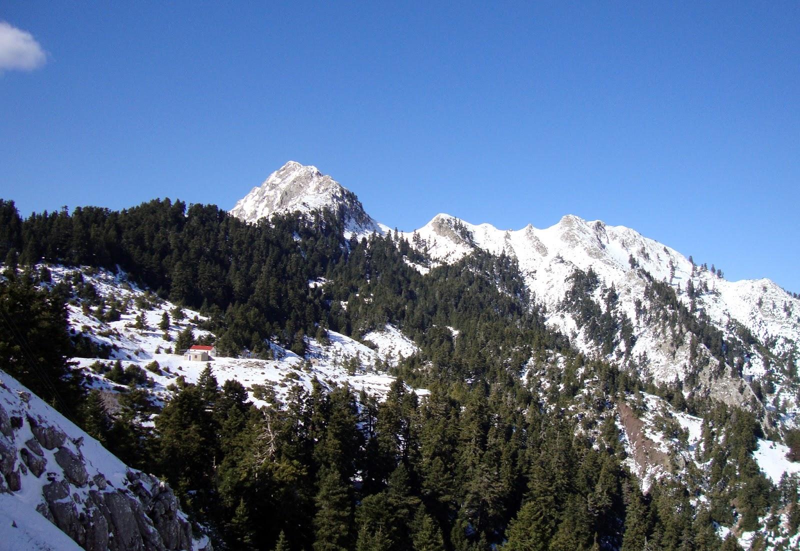 Κούτουπας βουνό κυνηγός ευρυτανίας στ κυνηγού