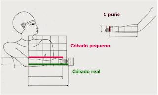 Proporción, módulo e canon
