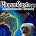 FloresCast #12 - Monitoramento Florestal