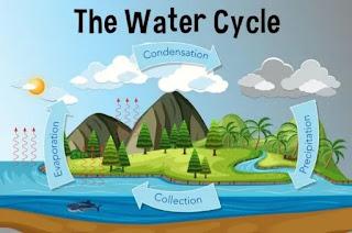 } जल चक्र क्या है जल चक्र क्या है बताइए जल चक्र से आप क्या समझते हैं जल चक्र क्या होती है जल चक्र की परिभाषा क्या है जल चक्र का क्या अर्थ है जल चक्र में गतिविधियों का क्रम क्या है जल चक्र को इंग्लिश में क्या कहते हैं जल चक्र क्या है इन हिंदी जल चक्र क्या है समझाइए