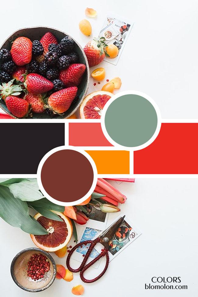 moodboard_variedad_de_colores_4
