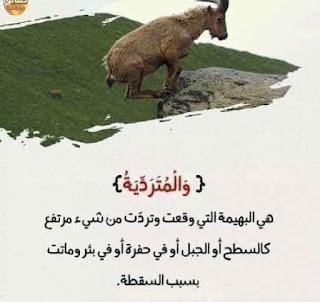 لفهم آيات القرآن الكريم 2.jpg
