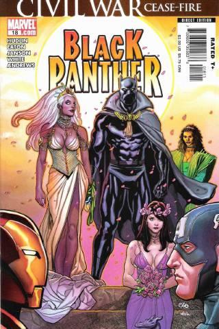 Civil War: Black Panther #18 PDF