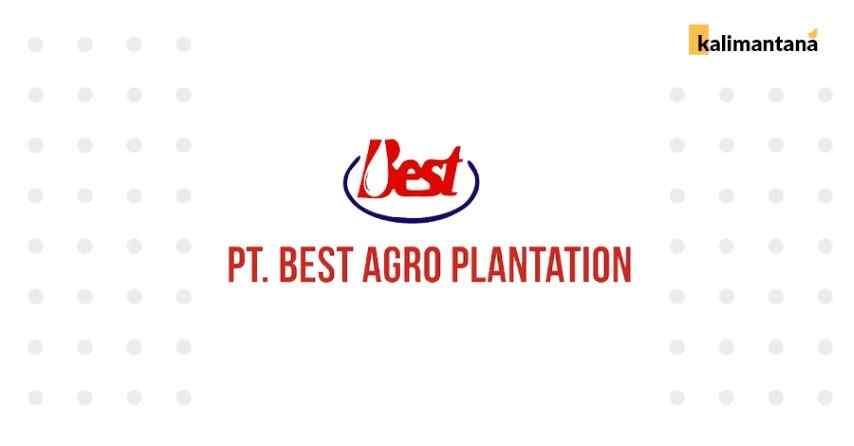 Lowongan Kerja Terbaru 2020 PT. Best Agro Internasional - Kebun Kelapa Sawit