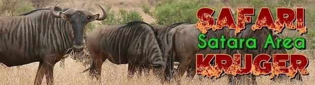 Safari-Kruger-Satara-Orpen-Gate