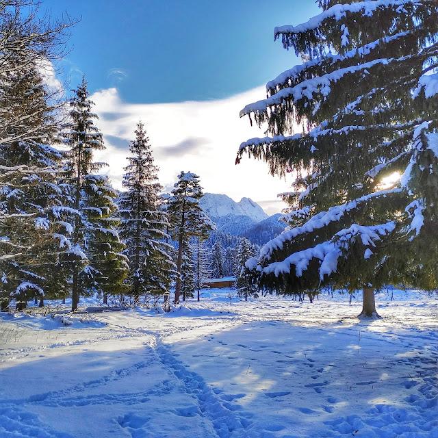 górki krajobraz, widok na Nosal, Tatry, Zakopane