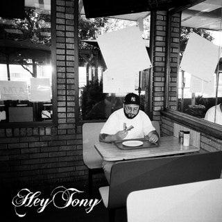 Tony Seltzer - Hey Tony Music Album Reviews