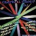 Tropical Group Dj - Versiones Remix 2001