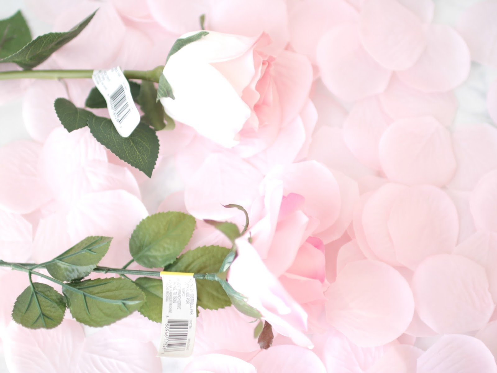 Elle sees beauty blogger in atlanta diy lancome blush la rose i wanted one that closely resembled the original lancome rose in color make sure the rose is clean and free from dust i used a blast from a keyboard ccuart Image collections