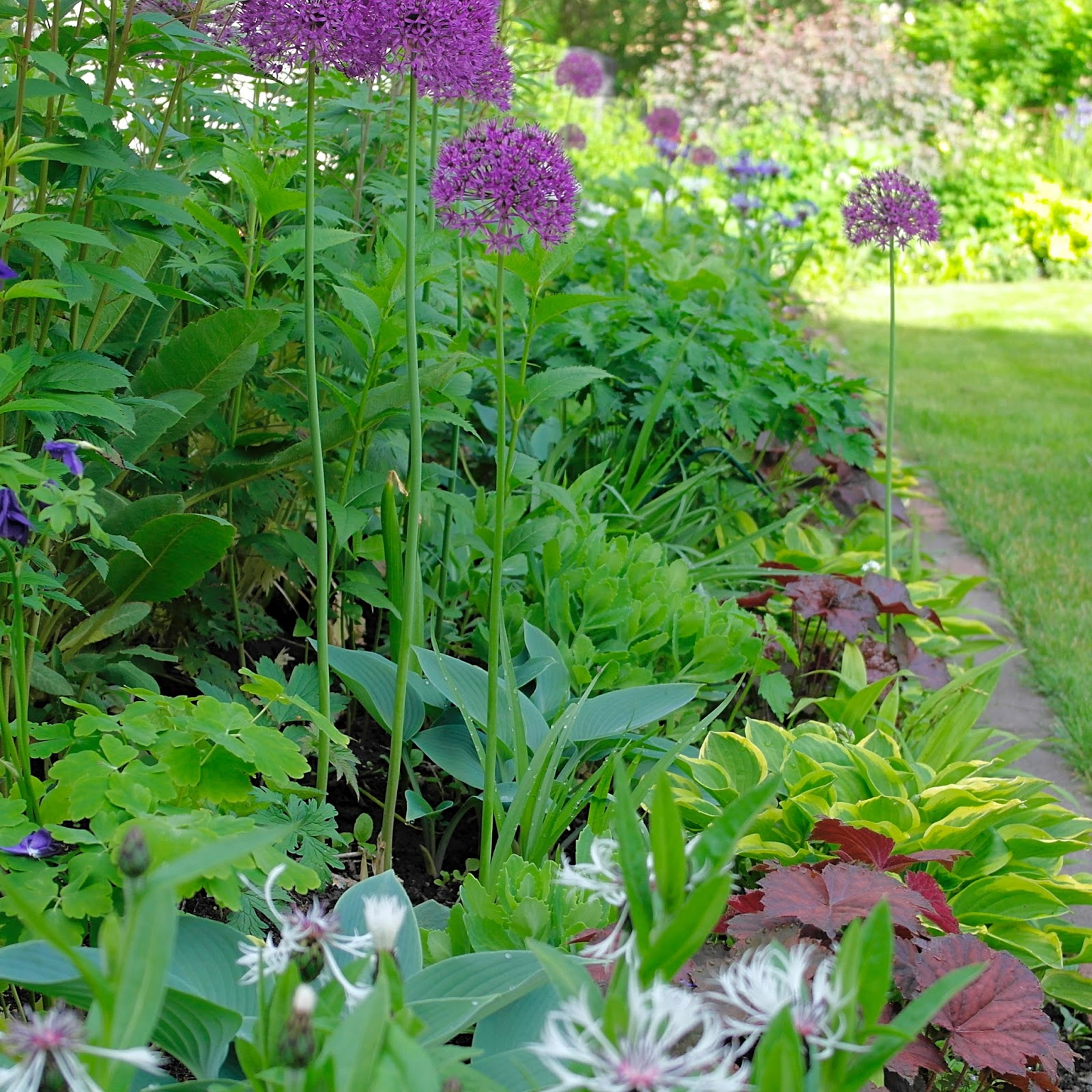 Floral passions green happiness for Green plants for flower beds