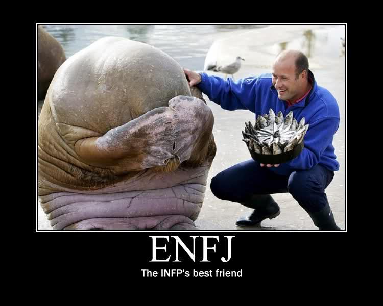 INFJ-ENFJ Relationship - Infj vs enfj relationship match