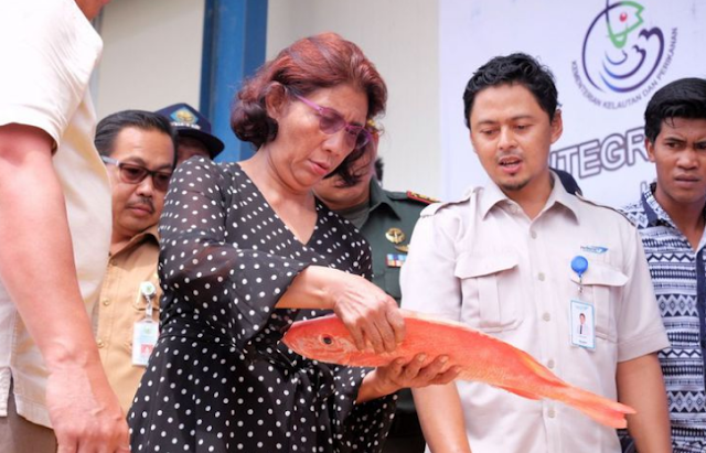 Waktunya Pelaku Usaha Perikanan Indonesia Bangkit!