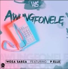 Woza Sabza - Awungfonele (feat. P Elle