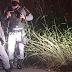 VIZINHA DE JOVEM ENCONTRADA MORTA NO RAMAL DO BRASILEIRINHO FAZ REVELAÇÕES BOMBÁSTICAS; VEJA VÍDEO