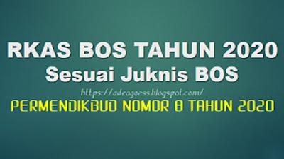 Download Contoh RKAS BOS TAHUN 2020 Sesuai Juknis BOS Permendikbud Nomor 8 Tahun 2020