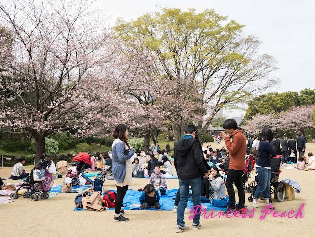皇居東御苑野餐